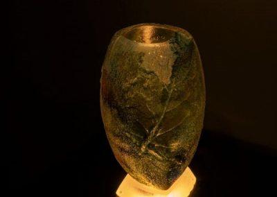 Les eternels ephemeres-vert 1